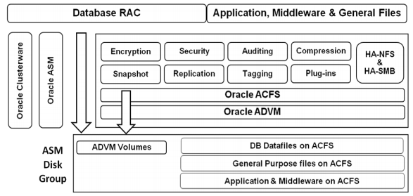 How to create Oracle ACFS file System and verify Snapshot
